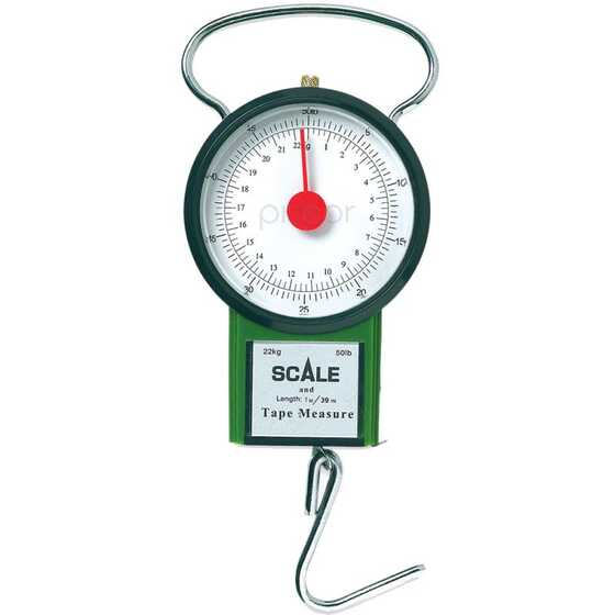 Lineaeffe 22 Kg Scale Weighing Range