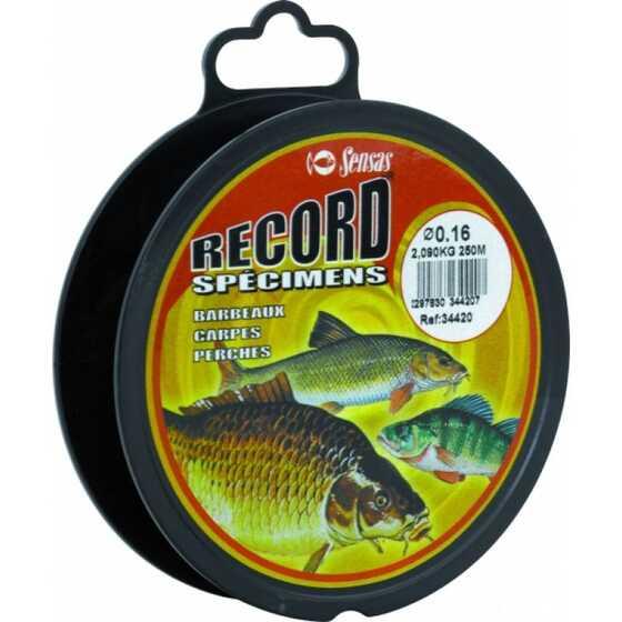 Sensas Record Barbel-carp-tench