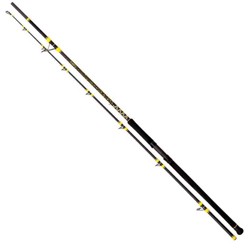 Black Cat Passion Pro DX Long Range - 3.30 m - 600 g