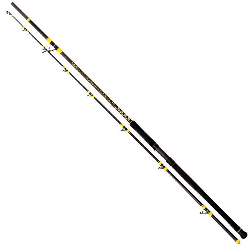 Black Cat Passion Pro DX Spin - 2.70 m - 60-200 g